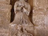Dama Sargantana